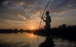 5 причин посетить Ботсвану