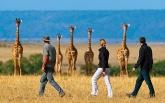 Куда ехать отдыхать на африканский континент