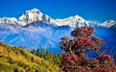 За отдыхом для души и тела - в Непал!